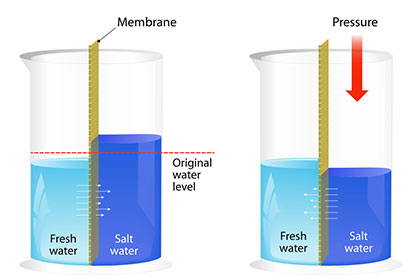 Membrantechnik